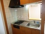 グレイスヴィラ 103号室のキッチン