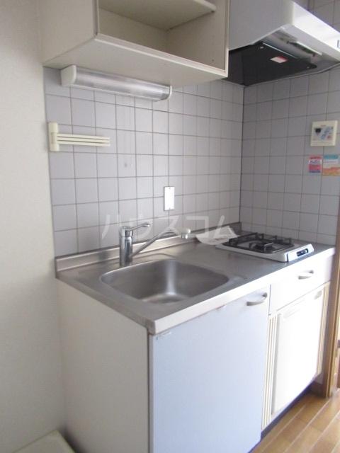 ヒットビット向ヶ丘 302号室のキッチン