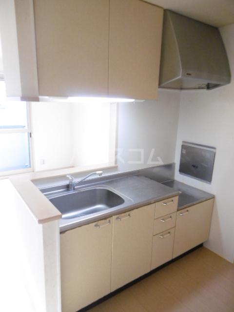 セジュール・ヤノ 101号室のキッチン