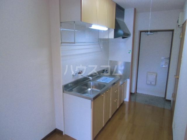 VIENT FUTURE 305号室のキッチン