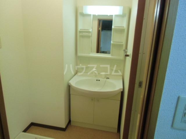 VIENT FUTURE 305号室の洗面所