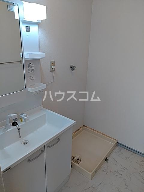 メゾン白鳳 202号室の洗面所