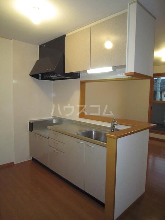 パティオ A 202号室のキッチン