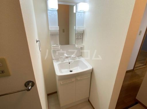 キャッスル雪谷 102号室の洗面所