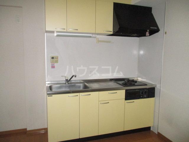 パルナッソス成城 205号室のキッチン