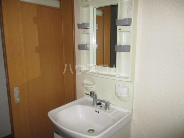 パルナッソス成城 205号室の洗面所