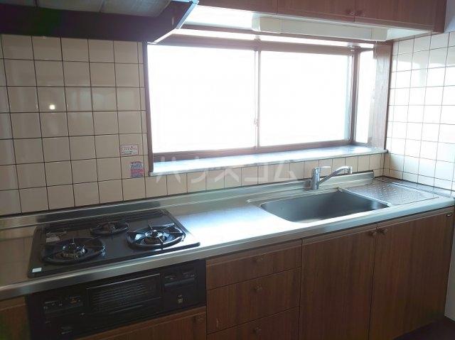 サクセスダイセイ 206号室のキッチン
