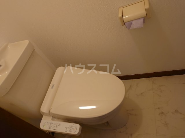 サクセスダイセイ 206号室のトイレ
