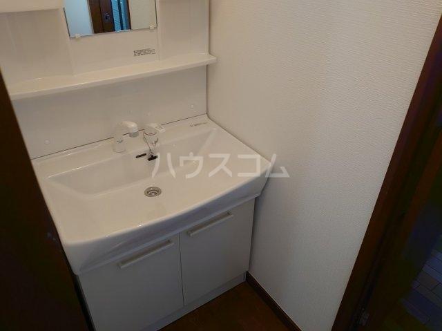 サクセスダイセイ 206号室の洗面所