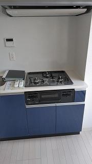 フレシア駒込 105号室のキッチン