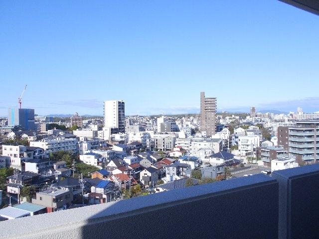 ウェルフォート幸川 1205号室の景色