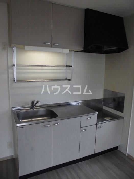 グリーンハイツ尾崎台 A 201号室のキッチン