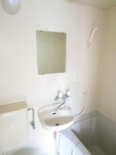 ウェルネス国分寺 302号室の洗面所