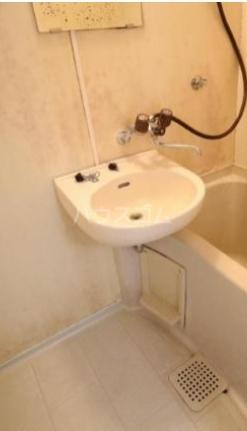 PALACIO MATSUDO 1650 204号室の洗面所