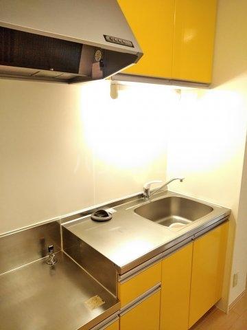 グランドゥール 207号室のキッチン