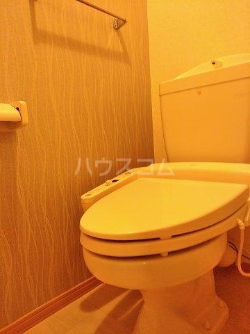 グランドゥール 207号室のトイレ