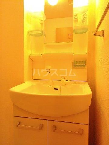 グランドゥール 207号室の洗面所