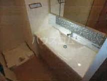 ライトテラス新宿御苑 601号室の洗面所