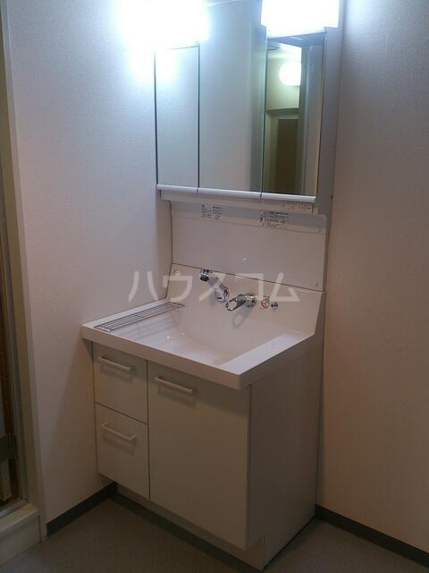 アミッドグリーン大濠 501号室の洗面所