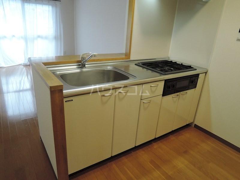 カンタービレ 301号室のキッチン
