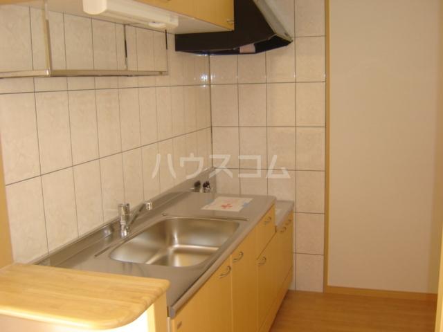 ヴェスパー 203号室のキッチン