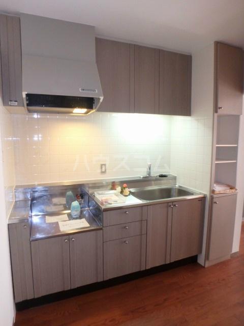 Sazan Piloti・つまだ 202号室のキッチン