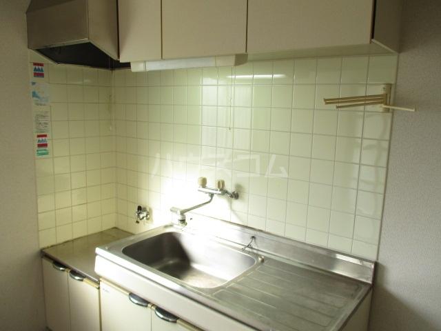 ハイツ中根 206号室のキッチン