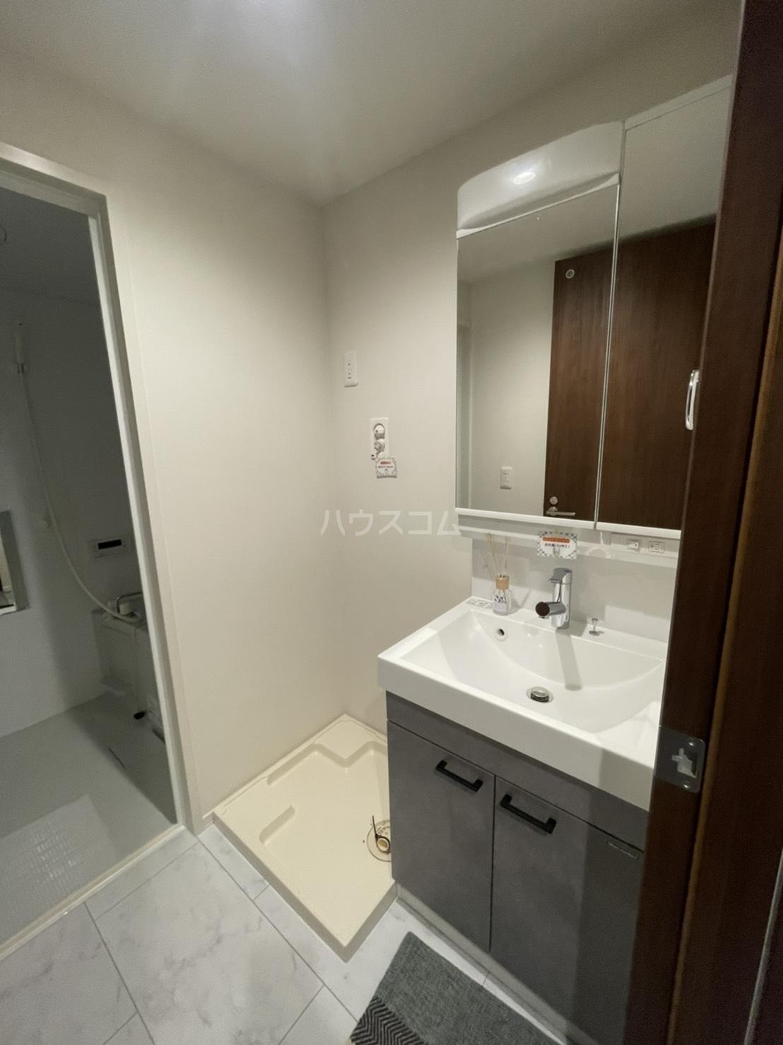 ルシェルブルー 101号室の洗面所