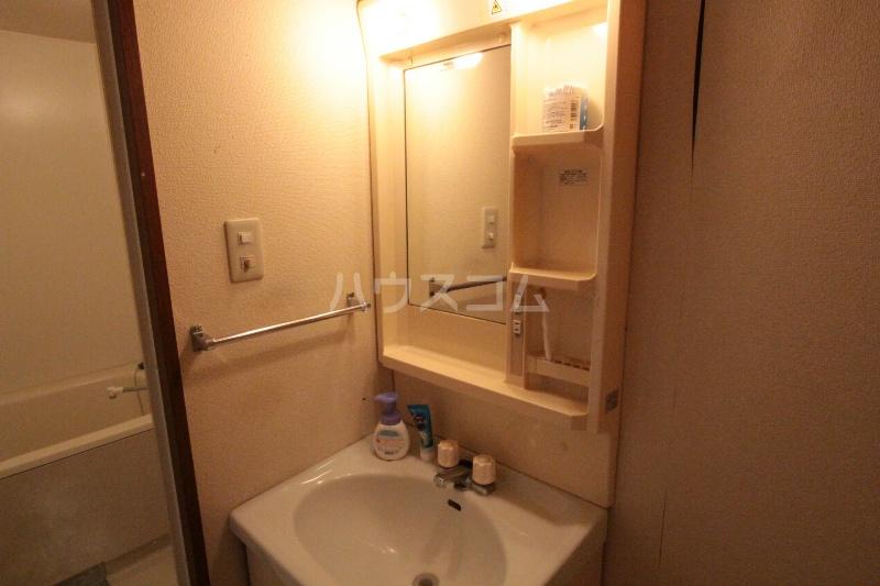 アズビオス元城 904号室の洗面所