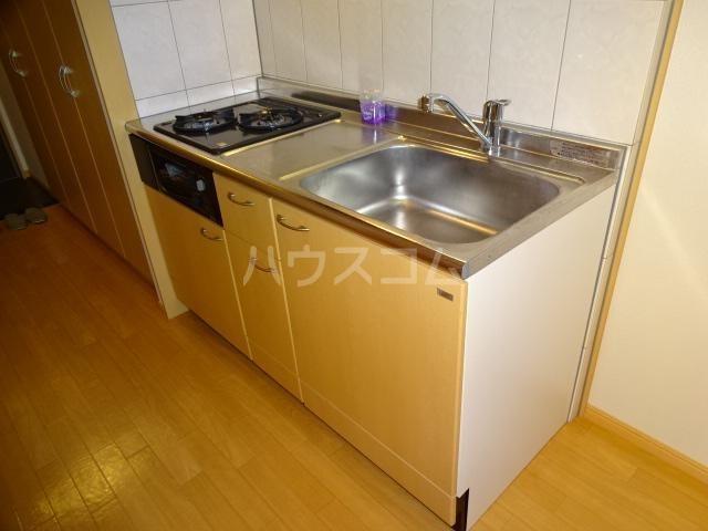 エクセレンスアイディ 208号室のキッチン