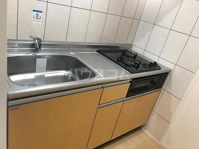 ルミナス スカイ 201号室のキッチン