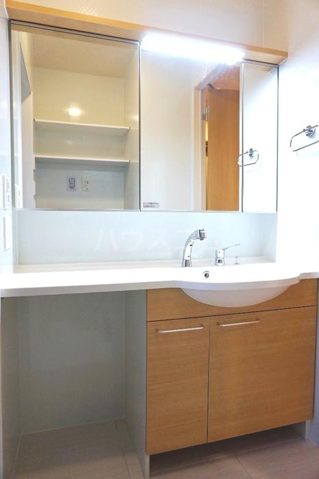 ガーネット 101号室の洗面所