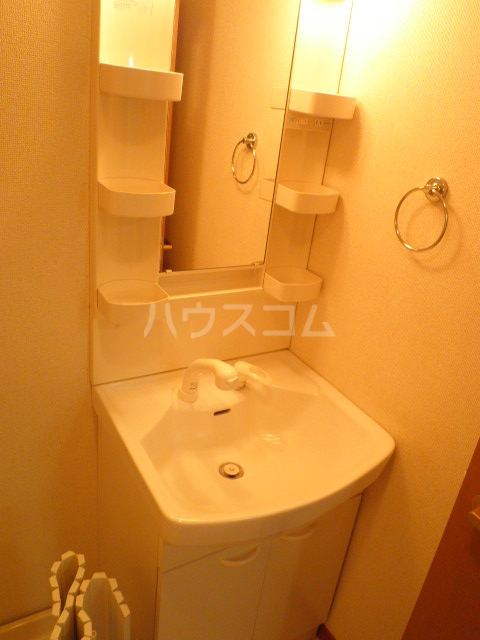 ニューハイツ日野 203号室の洗面所