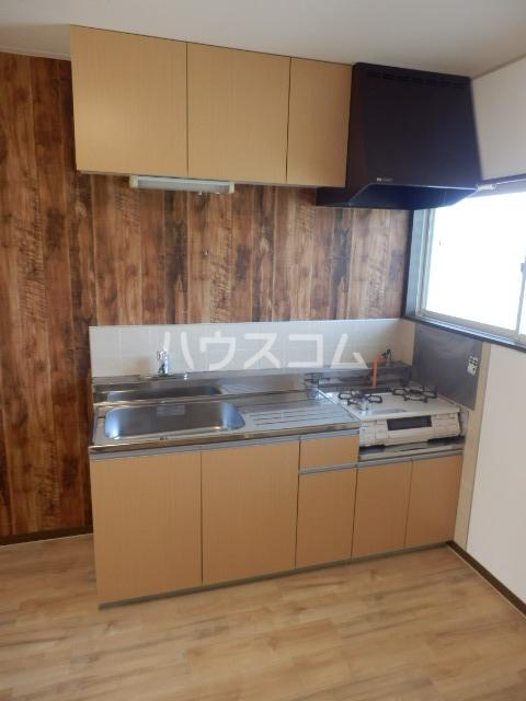 レイクサイド渚 201号室のキッチン
