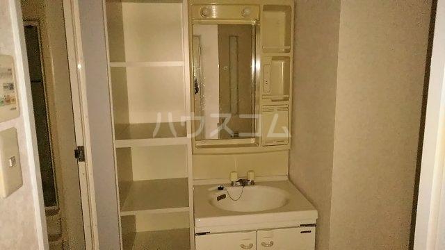 ウエスチングハウスⅢ 302号室の洗面所