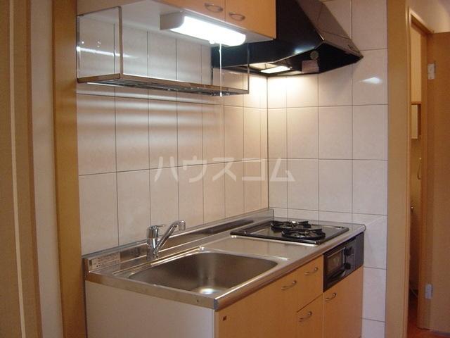 スターパレス谷上 202号室のキッチン