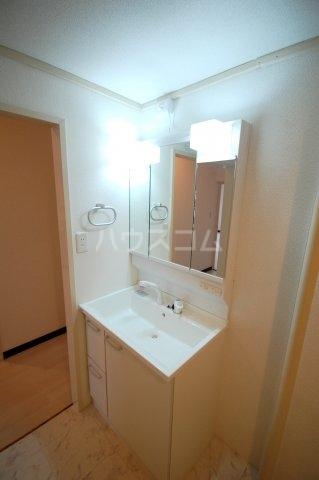 厚木リバーハイツ2号棟 234号室の洗面所