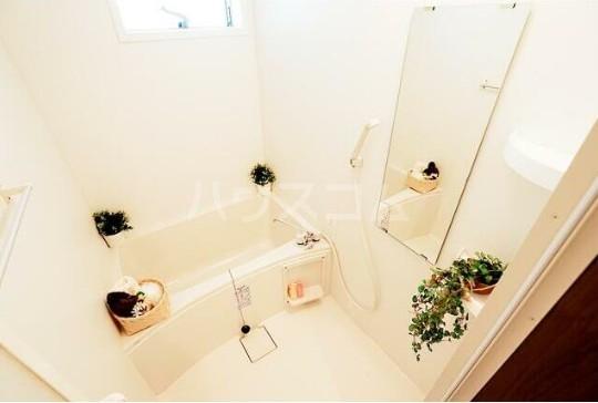 ルミエリア横浜 301号室の風呂