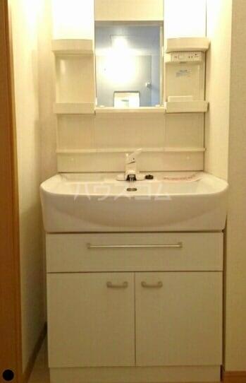 ラフレシールA 01010号室の洗面所