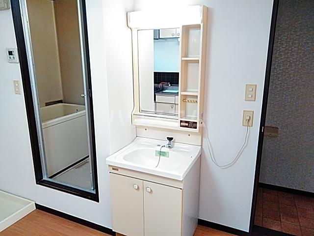 アップルハイツ 101号室の洗面所