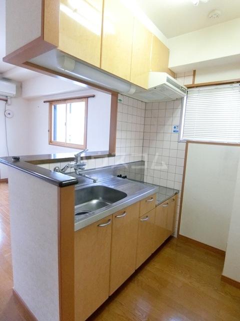 ヴェルゾン東公園 201号室のキッチン