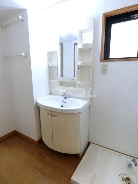 ヴェルゾン東公園 201号室の洗面所
