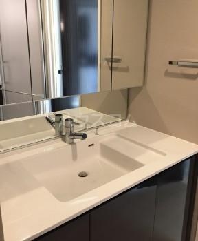 グランドミレーニア 605号室の洗面所