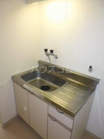 サンモール林 209号室のキッチン