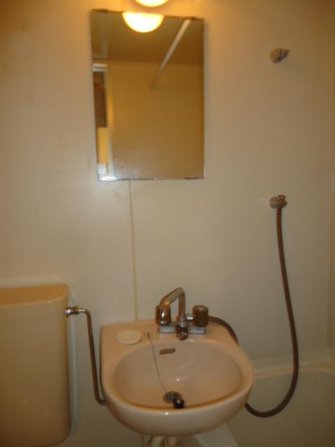 ルイシャトレ元八事 303号室の洗面所