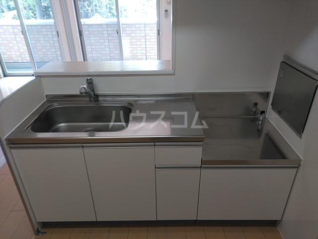 ピアニィ・レイディクス 201号室のキッチン