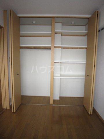 SOPHIA21 501号室の収納