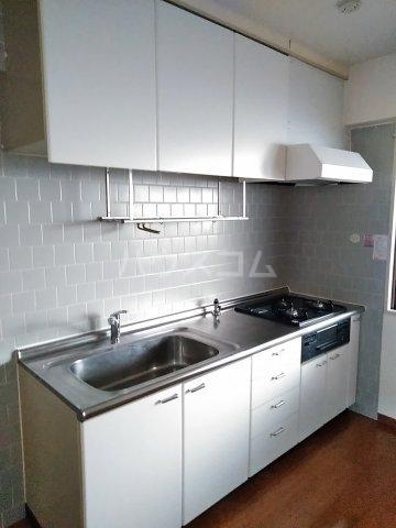 パレス町田 115号室のキッチン
