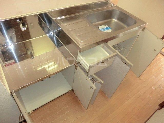 GRANDPIA 201号室のキッチン