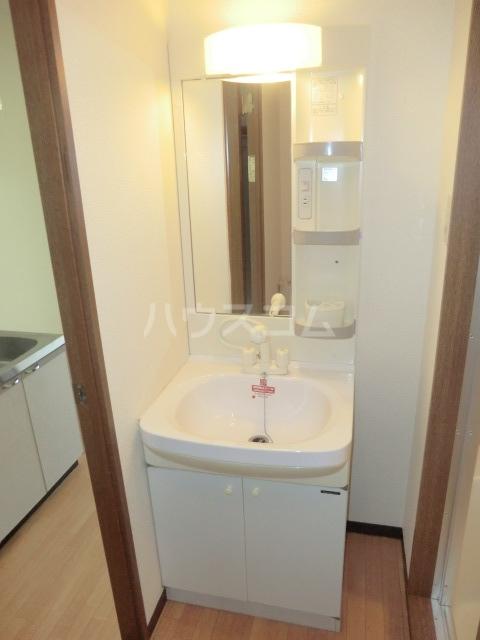 GRANDPIA 201号室の洗面所